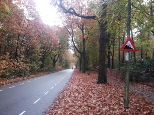 to-apeldoorn-hill